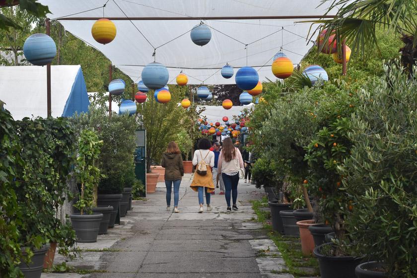 Botanikum Sommerfest c Monika Schreiner DSC 0165