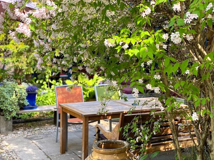Champor Garten c Isarbblog IMG 1602 1 1